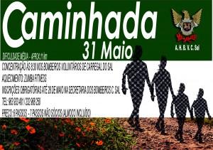 cartaz caminhada_2015